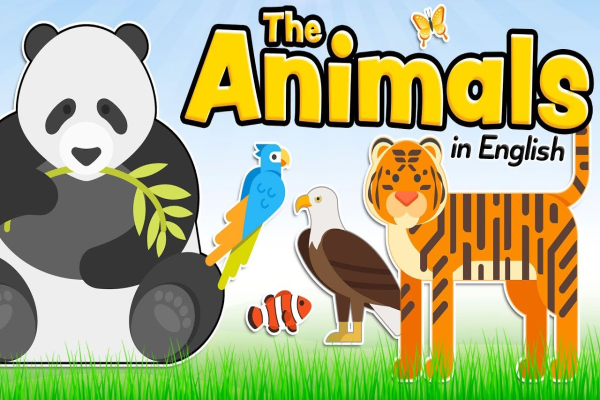 Animals in English for kids and beginners