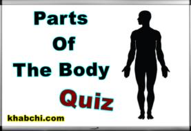 Parts of The Body - Quiz